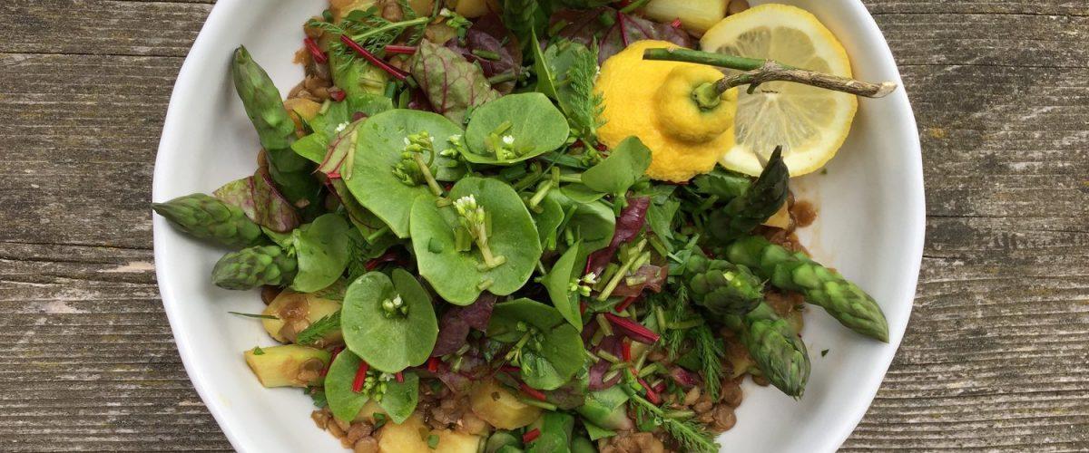 Lauwarmer Linsen-Spargel-Salat