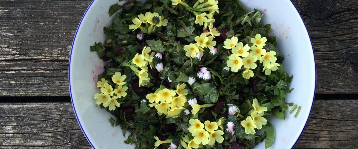 Löwenzahn-Salat mit Dinkel, Linsen und warmen Roten Rüben