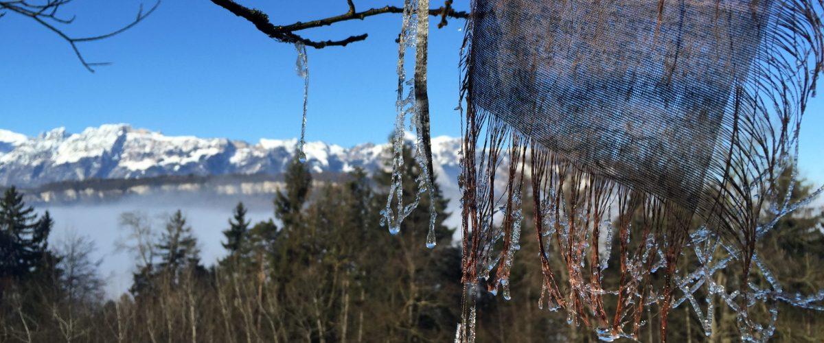 Winter – die Zeit des WASSER-Elements